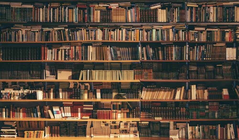 Do You Have What Publishing Companies Are Really Looking For?